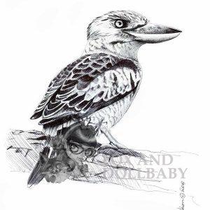 Kookaburra Special Edition Bird Art Print