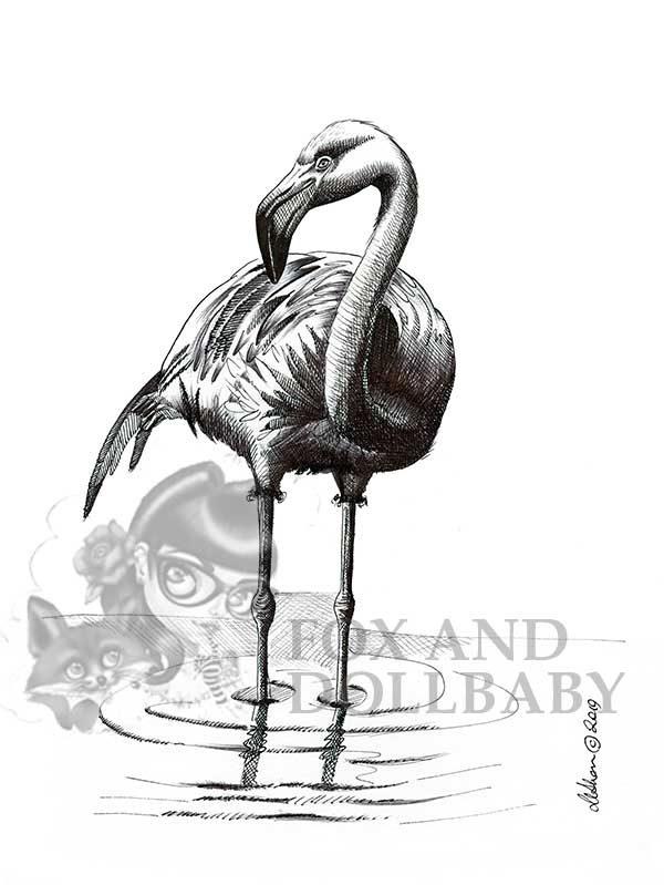 Flamingo Special Edition Bird Art Print