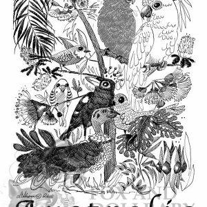 Australian Flock Special Edition Bird Art Print