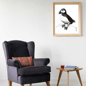 Puffin Special Edition Bird Art Print