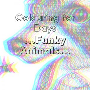 Funky Animals colouring in book